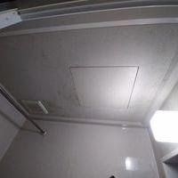 浴室天井のカビ除去(武蔵野市)